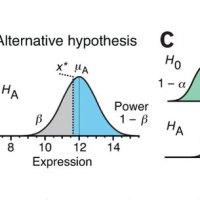 Statistical Inference: Kiểm định giả thuyết thống kê (Hypothesis Testing)