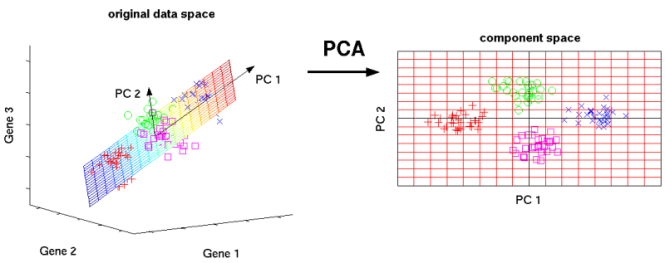 PCA reduce 3D to 2D space