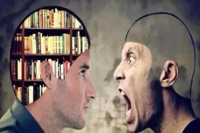 Stupid vs Smart