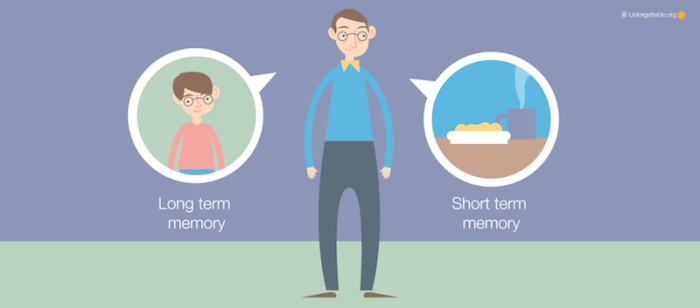 Short term vs Long term memory