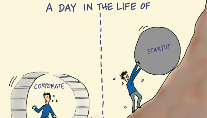 corporation vs startup