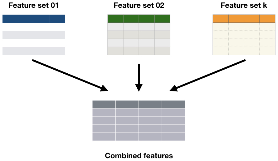 ds_mini_combined_features